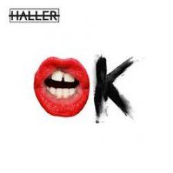 Cover HALLER - OK